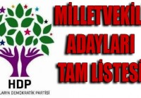 HDP'nin YSK'ya Verilen Aday Listesi