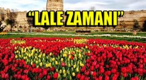 lale_zamani-istanbul